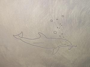 dolphin tool user