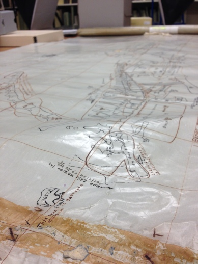 Many maps of Carnegie Quarry were made as it was being excavated. This one is made from some kid of waxed linen and seems to date to the 1940s.