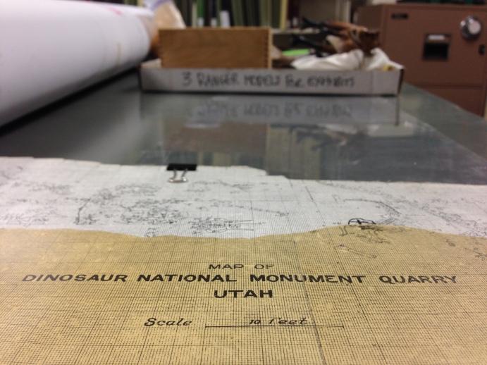 A peek inside the Dinosaur National Monument archives