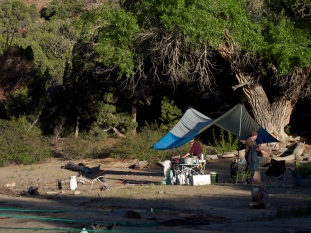 """Camp consisted of all our tents and a common area for cooking, eating and washing dishes, as well as a """"groover"""" for more personal tasks (not pictured). Everything a camper brings to the river must be taken back with them when they leave, in one form or another."""