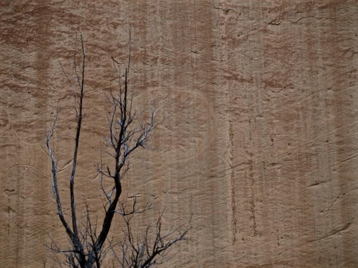 Rock art at Dinosaur National Monument