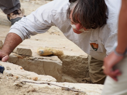 Dinosaur National Monument's Park Paleontologist Dan Chure at work in the quarry.